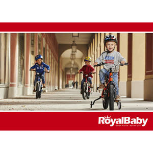 ROYALBABY GB Prospekt