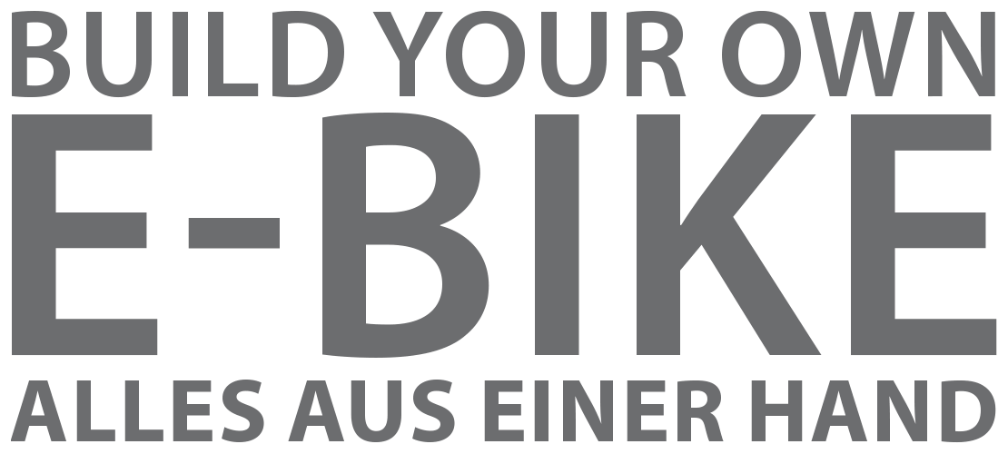 Build your own E-Bike